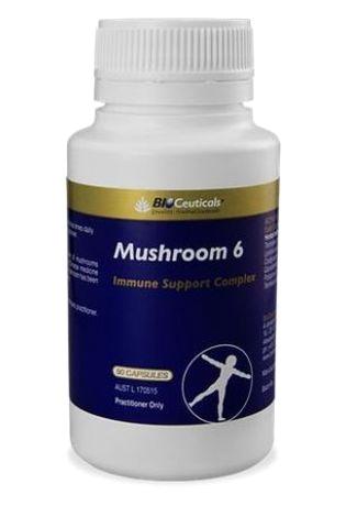 Bioceuticals-Mushroom-6