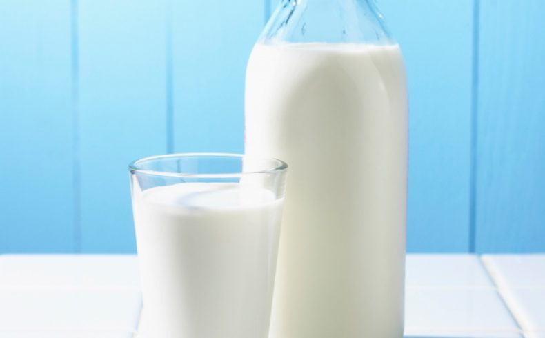 Does Cow's Dairy Leach Calcium From Your Bones?