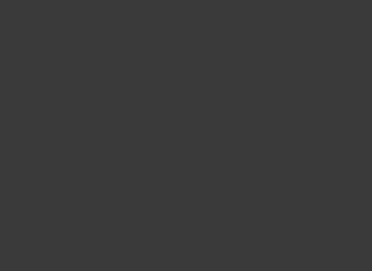 HomepageslideexampleVI
