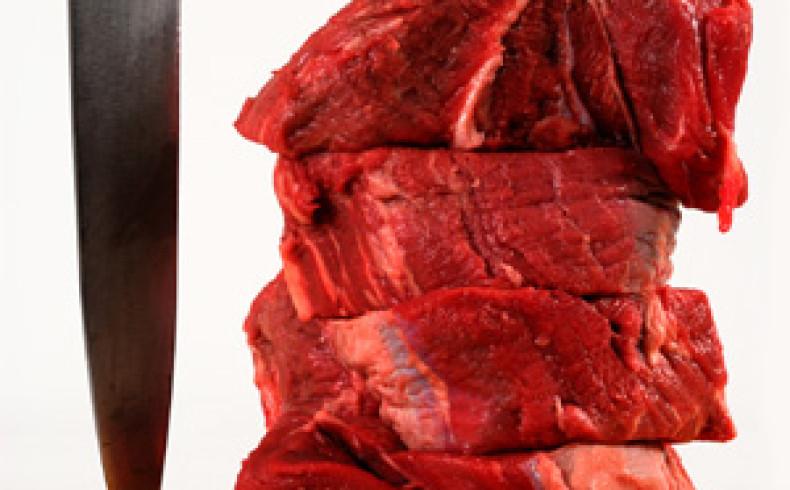 Is the Paleo diet dangerous?