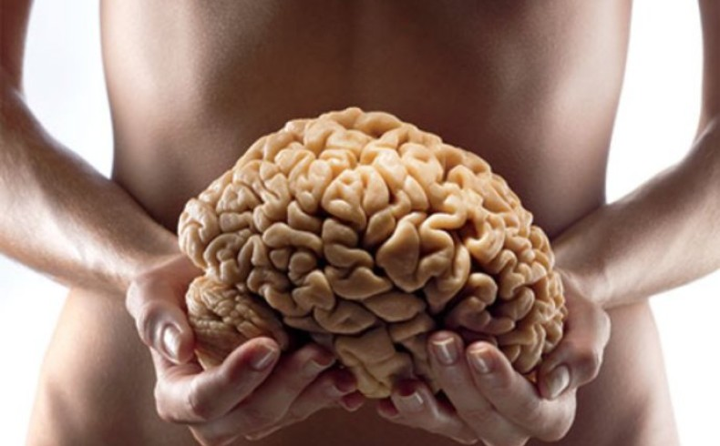 Why your gut IS your second brain