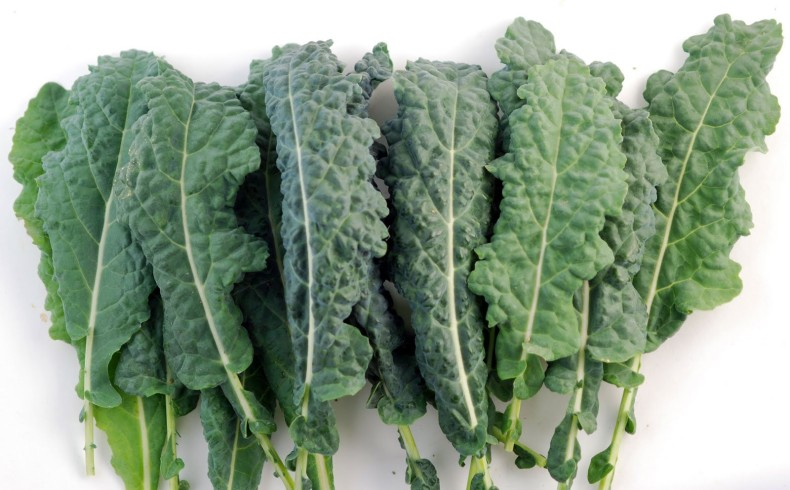 Could the kale craze be making you fat?